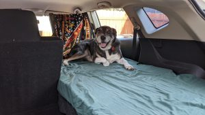 Read more about the article Low Budget Camper Conversion in a Nissan Rogue
